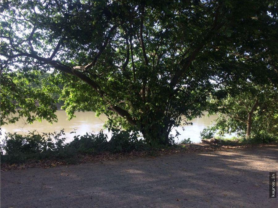 finca 105 hect en cotorra frente al rio sinu