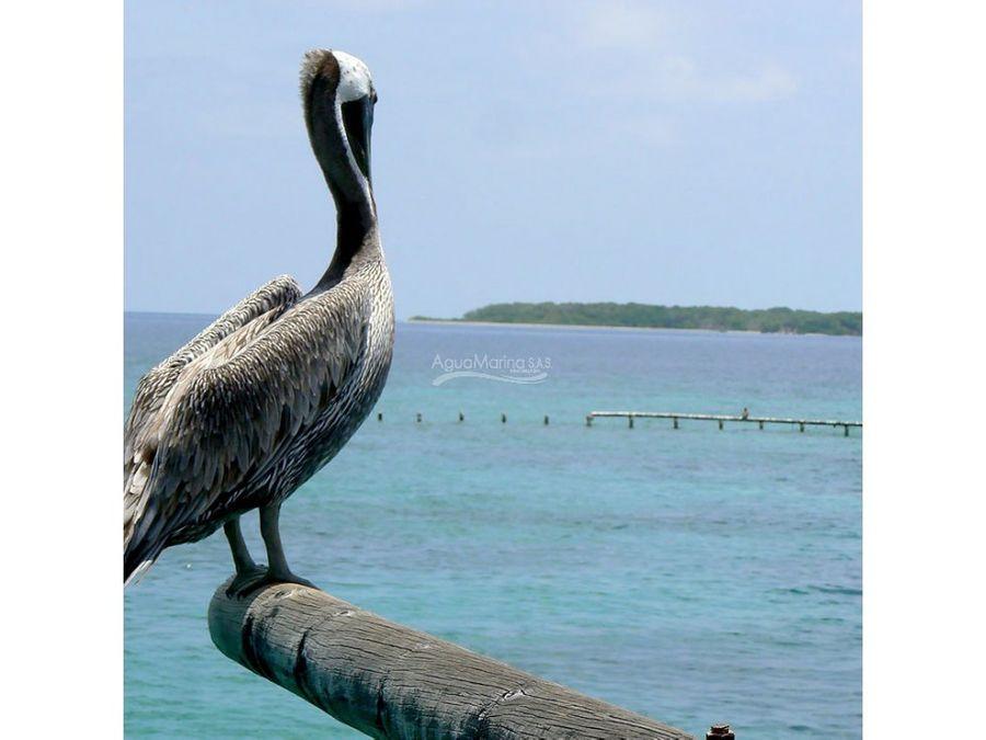 isla tierra bomba arriendo temporadas