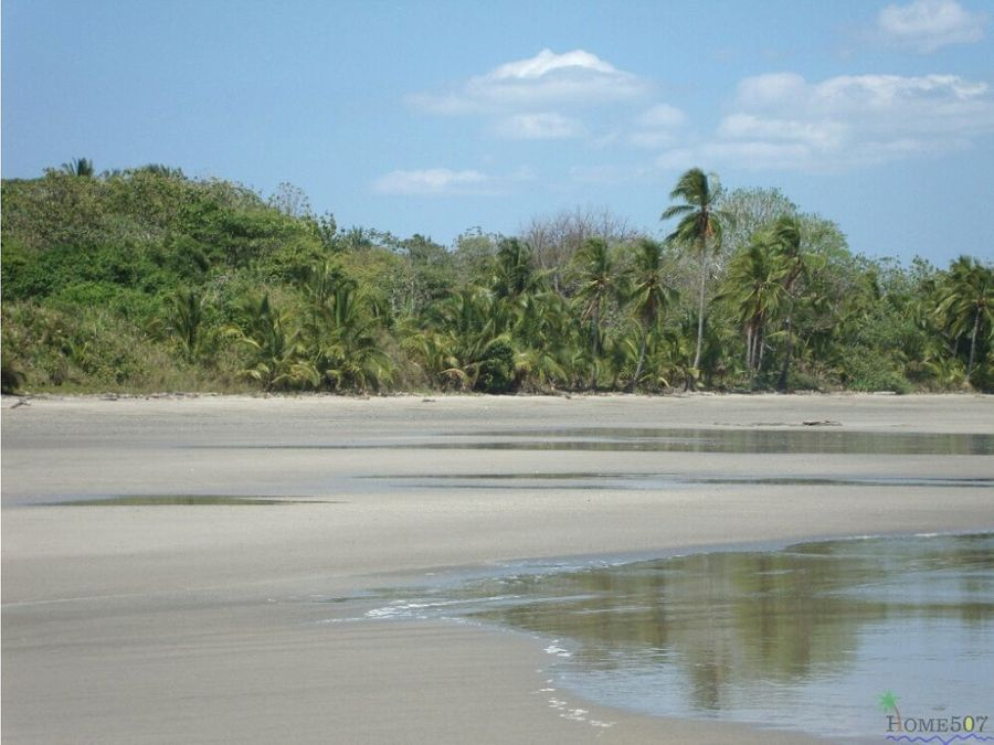 isla salvaje turistica veraguas panama