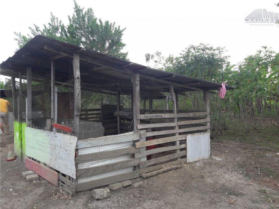 vendo casa campestre en la pozona cerete