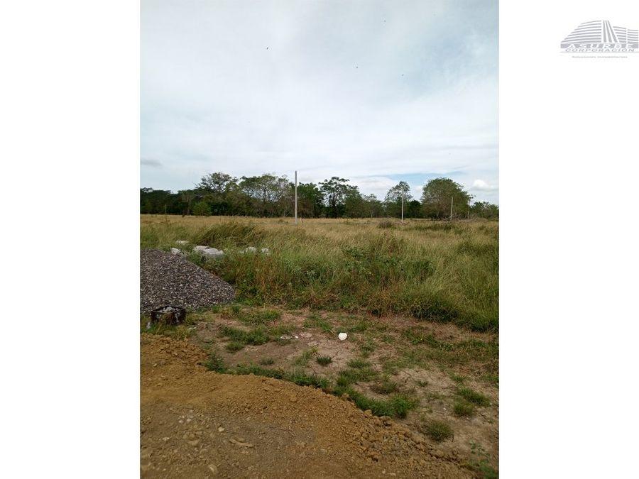 vendo cuatro hectareas de tierras en el sabanal monteria