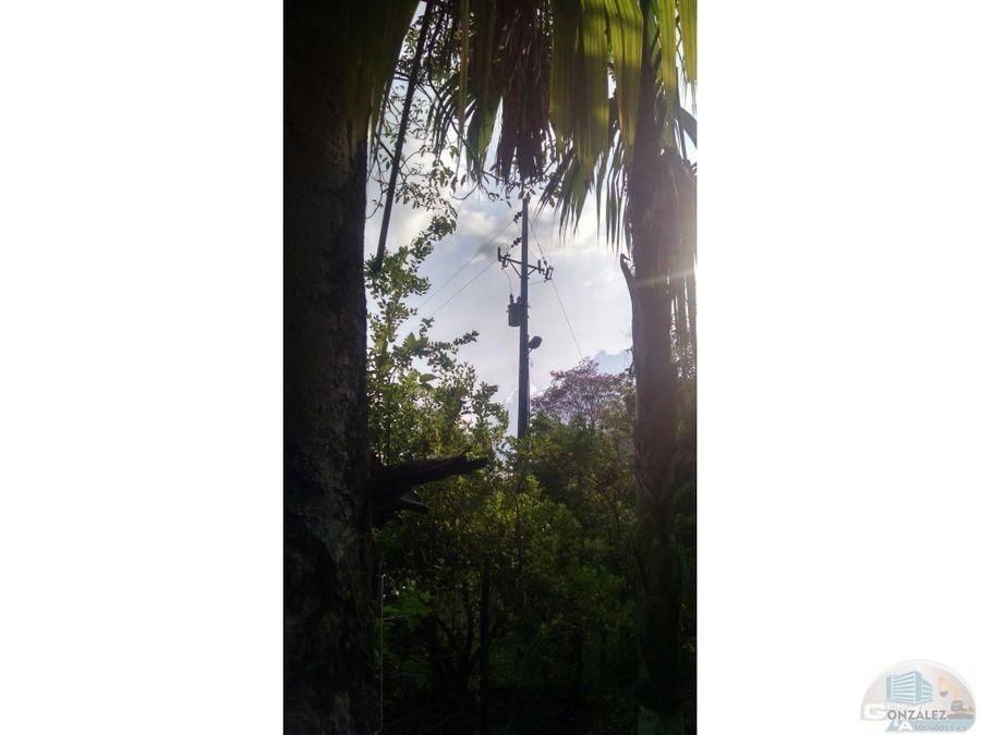 vendo hermosa finca via aguas negras monteria