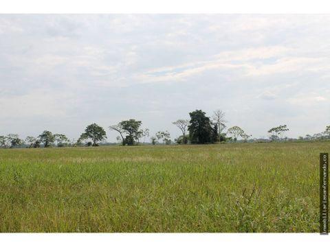 terreno agricola cerca a villavicencio meta