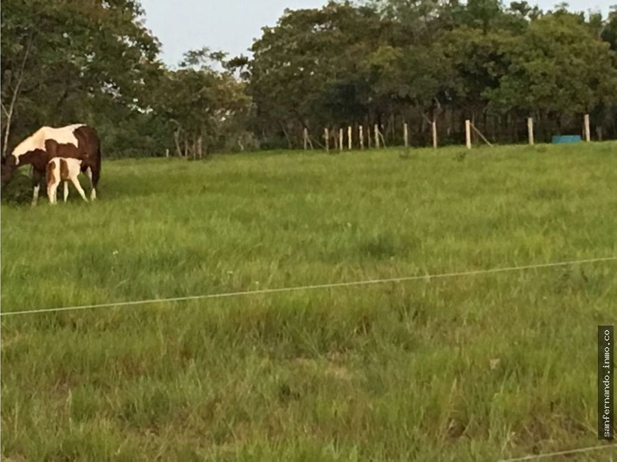 finca de 5469 hectareas en puerto gaitan meta