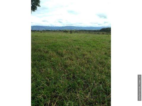 finca de 80 hectareas en mesetas meta