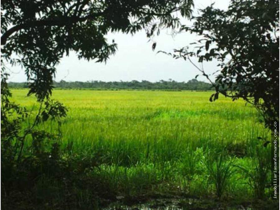 terreno de 45 hectareas con espectacular laguna en cabuyaro meta