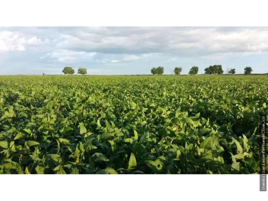 magnifico terreno agricolade 25 hectareas en puerto lopez meta