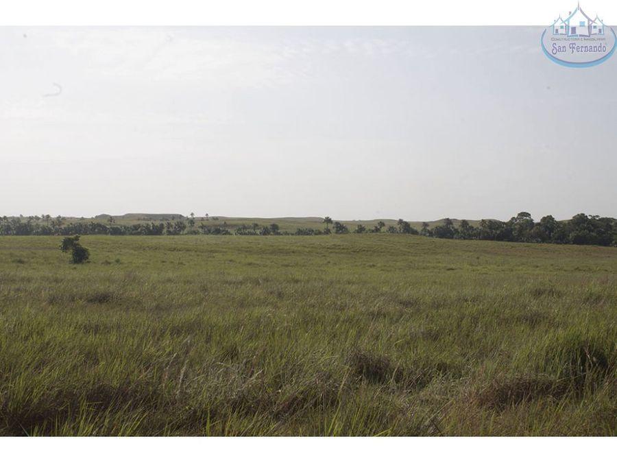 venta de grandes extensiones de terreno