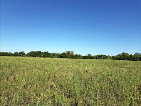 campo 105 has con frente de 350 mts sobre ruta 6