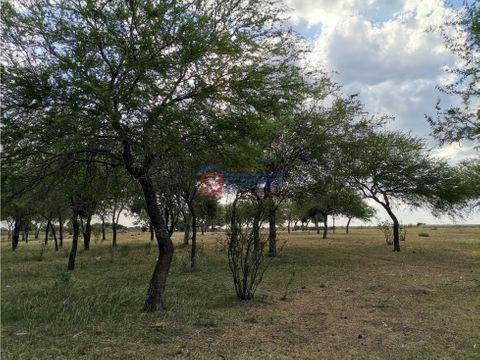 vende campo de 50 hectareas costa arroyo san javier