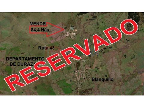vende campo de 844 hectareas en blanquillo