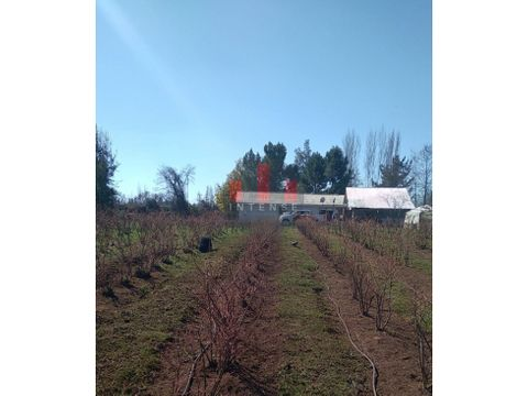 venta de parcela con casa y terreno cultivado