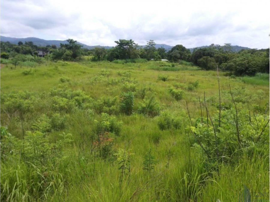 terreno para venta en mananitas