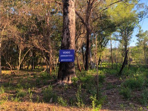 terrenos en itacurubi frente al rio