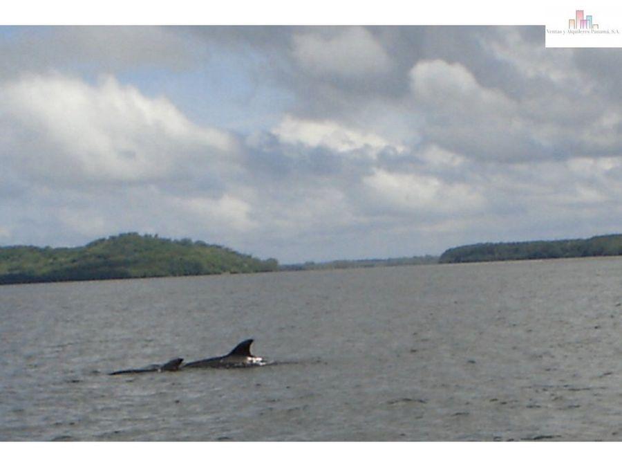 isla en el oceano pacifico panama rep de panama