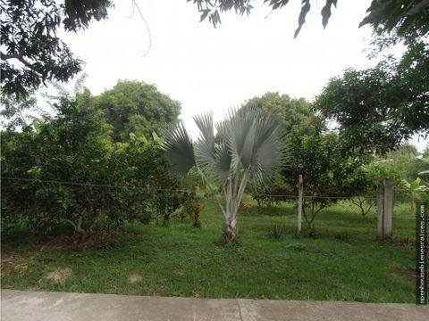 venta finca lombricultura en guamo tolima