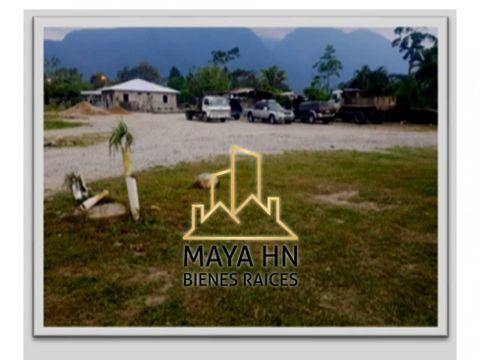 se vende terreno en la aldea aldea el pino