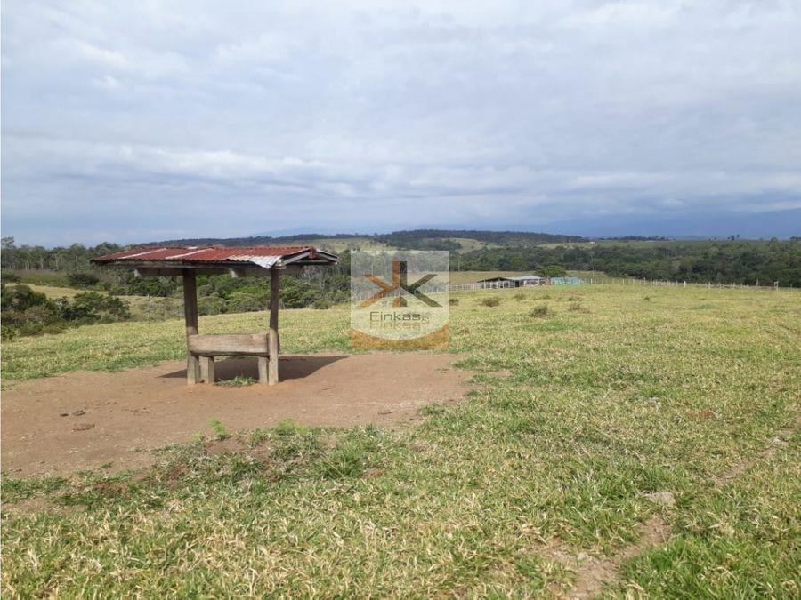 se vende finca de 158 hectareas en meta
