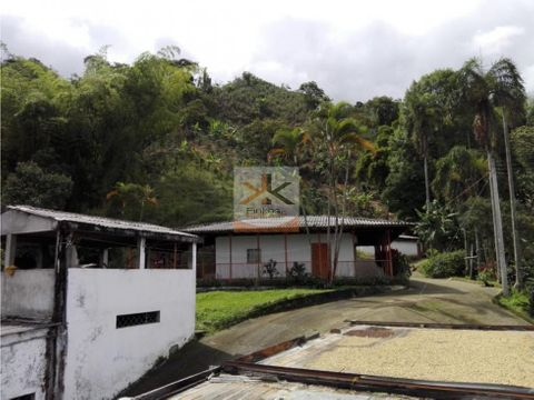 se vende finca la virginia calarca