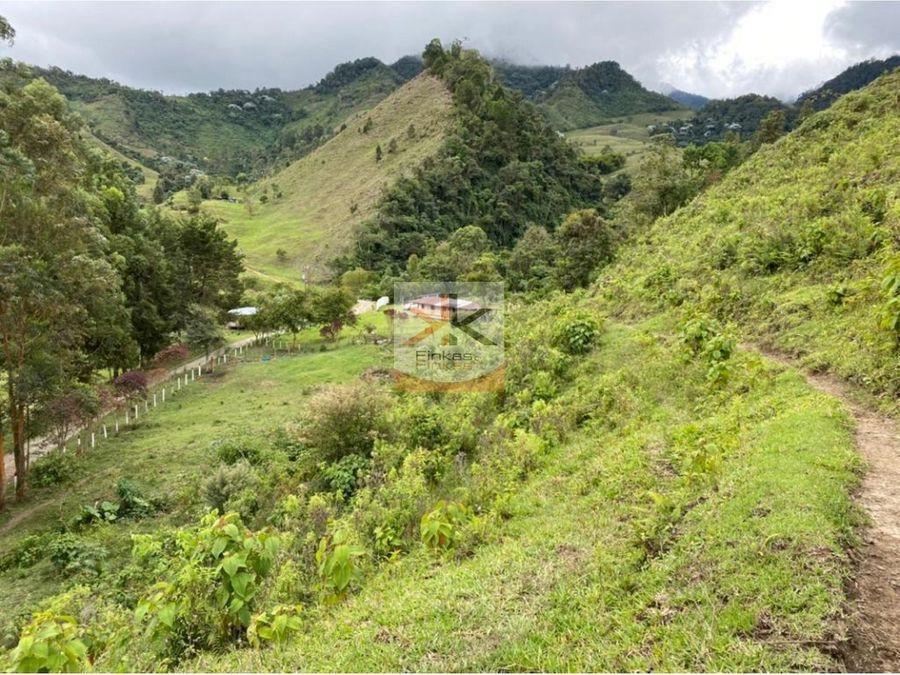 se vende finca ganadera de 240 cuadras en trujillo valle