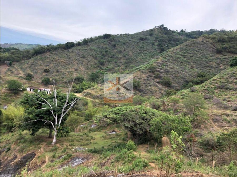 se vende finca quebradanueva sevilla valle