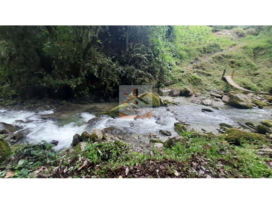 se vende finca en vda rio gris genova