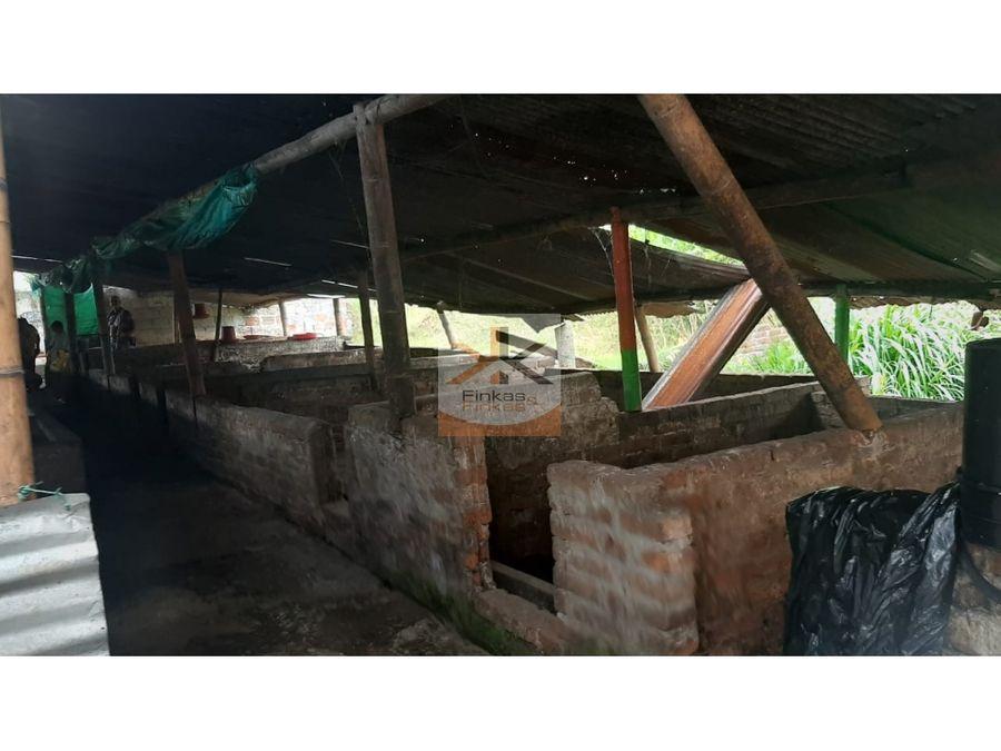 se vende finca en quimbaya quindio
