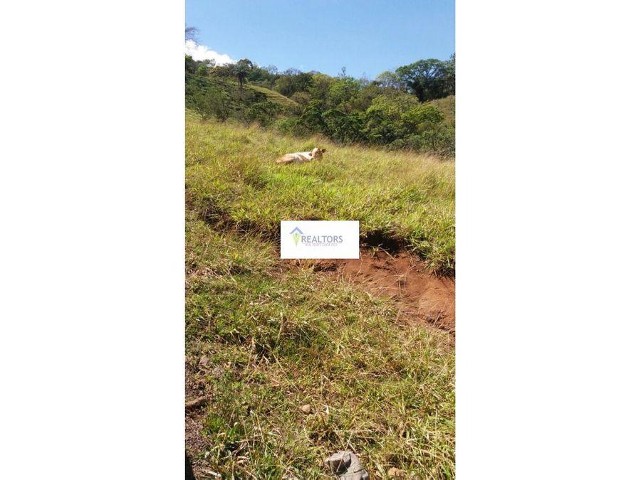 venta de terreno en puriscal san antonio