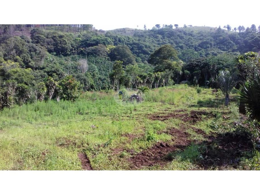 venta de terreno en san miguel naranjo