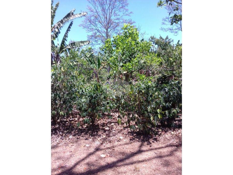 venta de terreno en san miguel de naranjo
