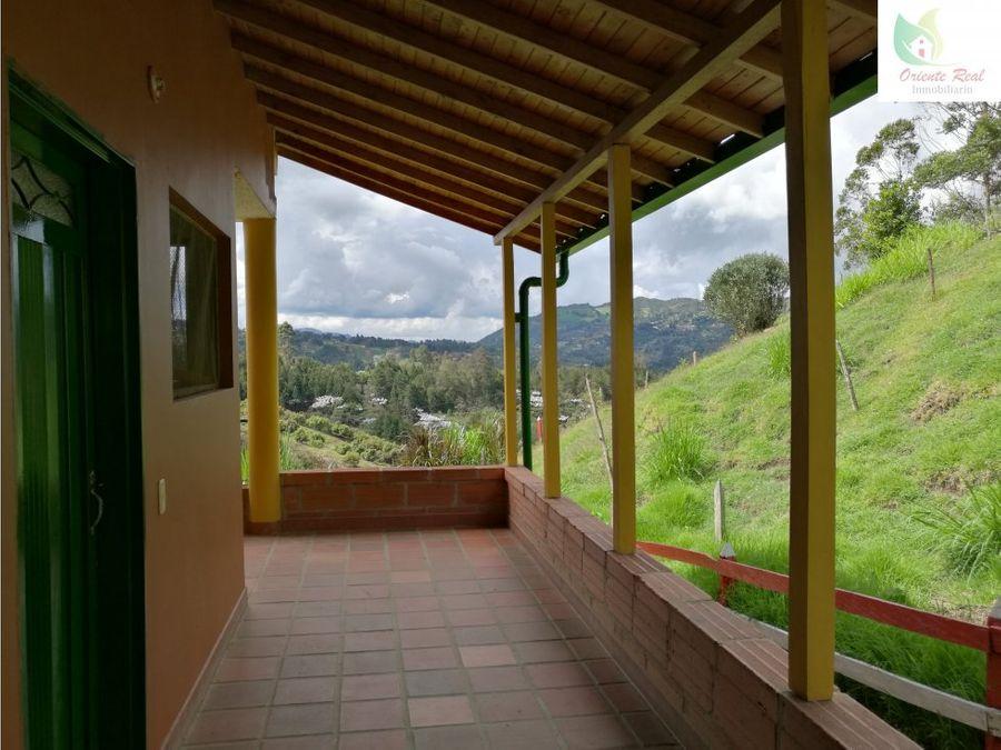 finca 2 casas guarne en venta 11887 m2