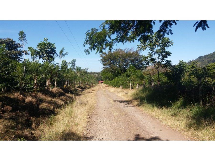 finca de 71 hectareas en alajuela