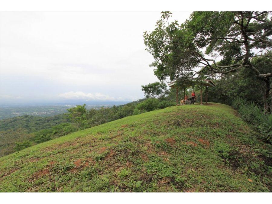 propiedad de 44 hectareas en ciudad colon