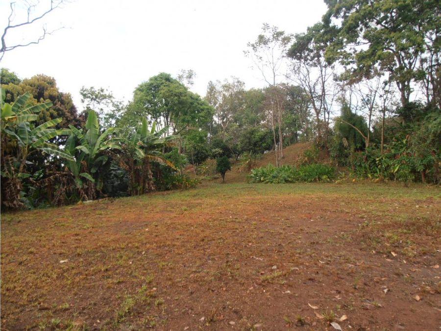 finca en venta pursical 19 hectareas