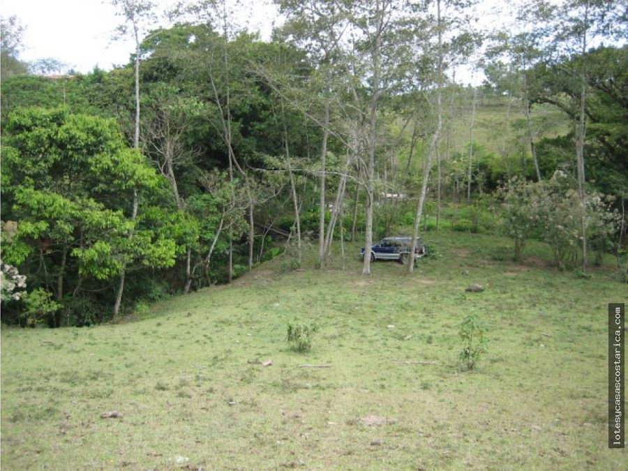 vendo lote en guadalupe 4 hectareas
