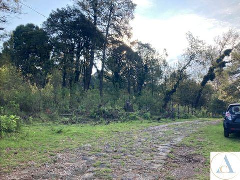 1000 m2 san jose de la montana huitzilac morelos