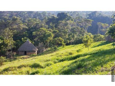 gran terreno con eco bungalows casa en san roque de cumbaza