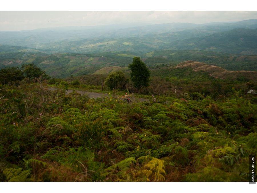 terreno en lamas con vista espectacular