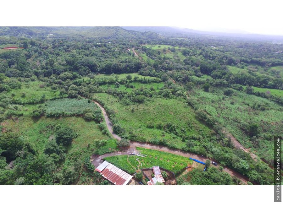 se vende terreno de 5 hectareas en utive
