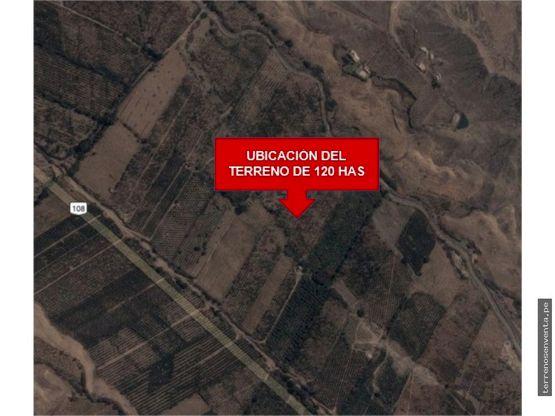 terreno agricola de 120 hectareas huaral