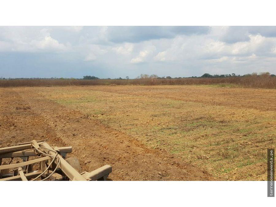 venta de terreno agricola de 1100 has en pucallpa