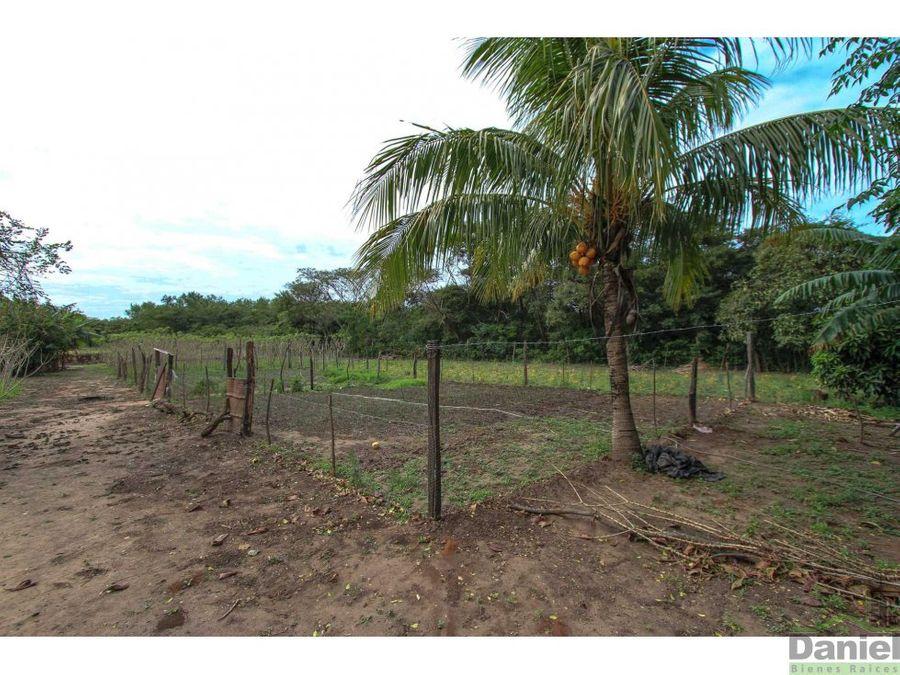 terreno de 1 hectarea en cotoca