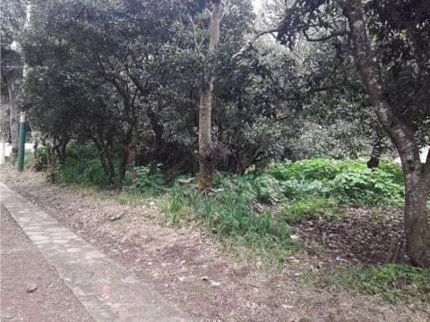 terreno san lucas los pinos