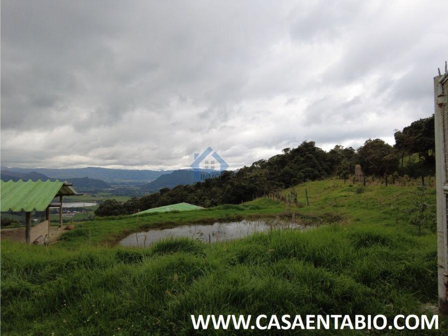 vendo finca de 16000 mts reserva forestal en tabio