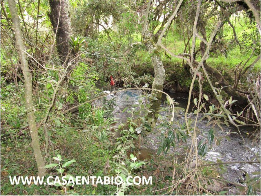 vendo finca de 12 fanegadas en tabio con rio
