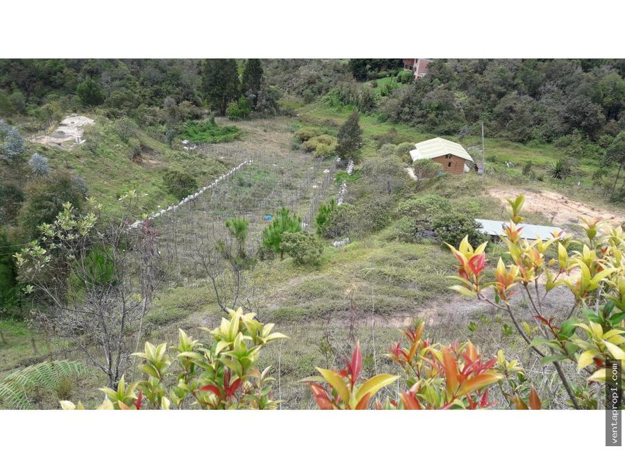 venta de lote en guarne vereda berracal