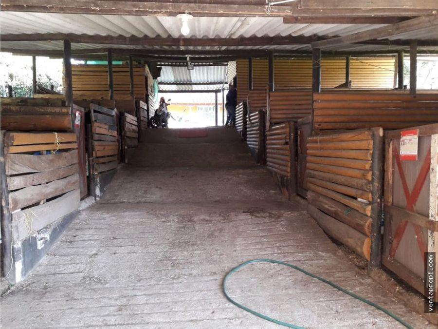 venta de finca en rionegro el capiro