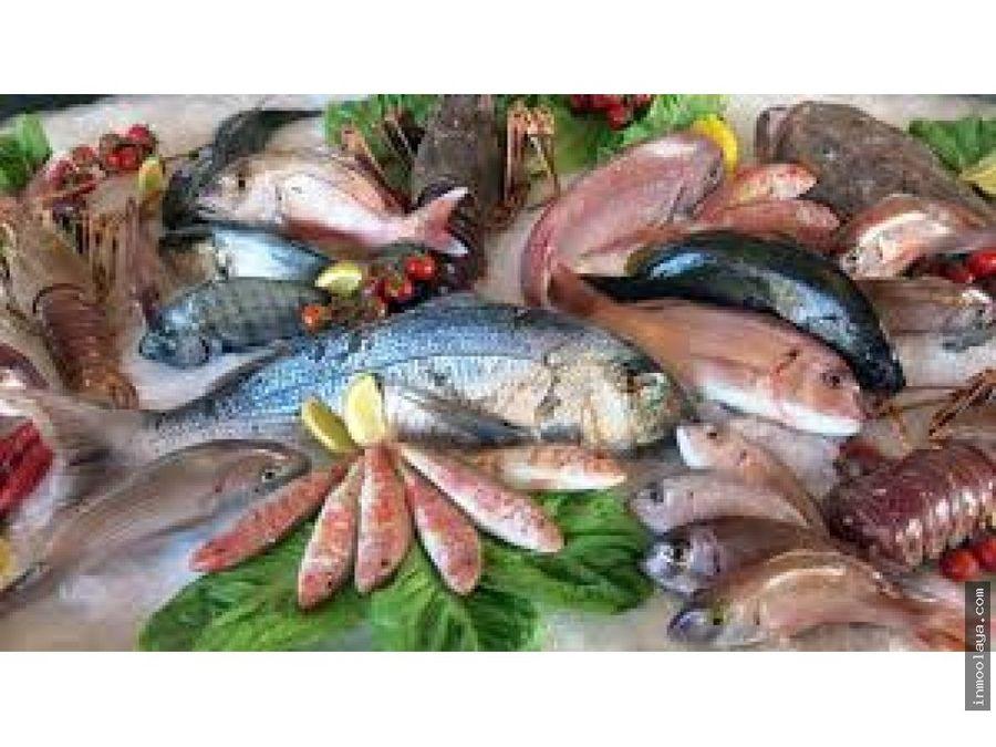 traspaso parada de pescado mercat de la llibertat