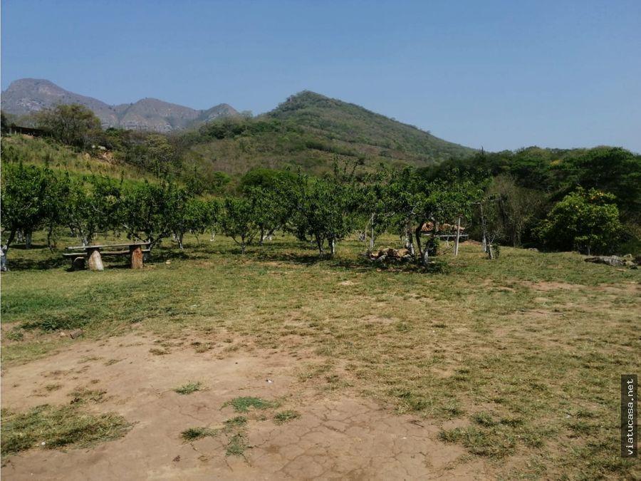 achira coffee farm cabin