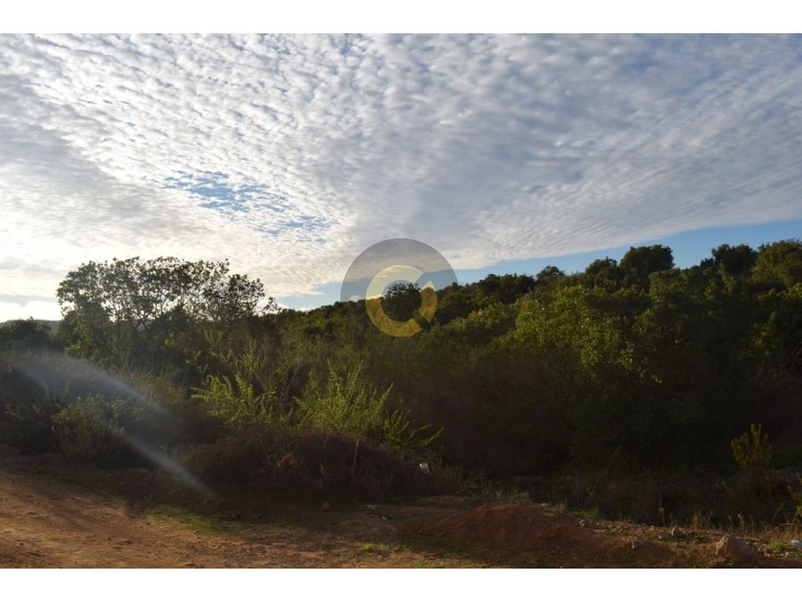 vta parcela 5000m2 valle alegre puchuncavi vu 580 niru